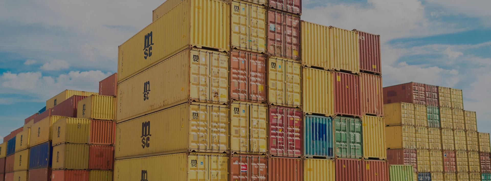 Tramiaustral comercio exterior